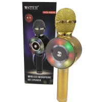 Микрофон караоке ws669